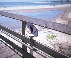 Environmental and Natural Resources